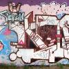 b-ash_turok_2009_web