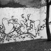 walls_b-ash_2009-22