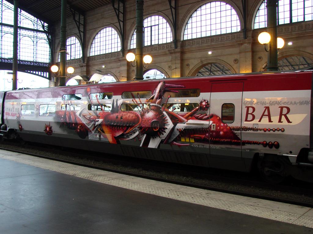 Paris 2009 - Thalys (6)