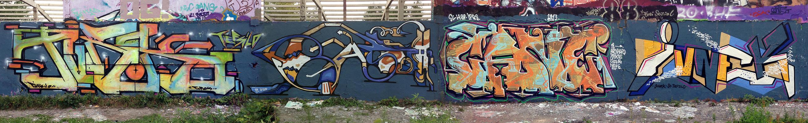 Turok_B.ash-Cane_Junek_Berlin_2013_web